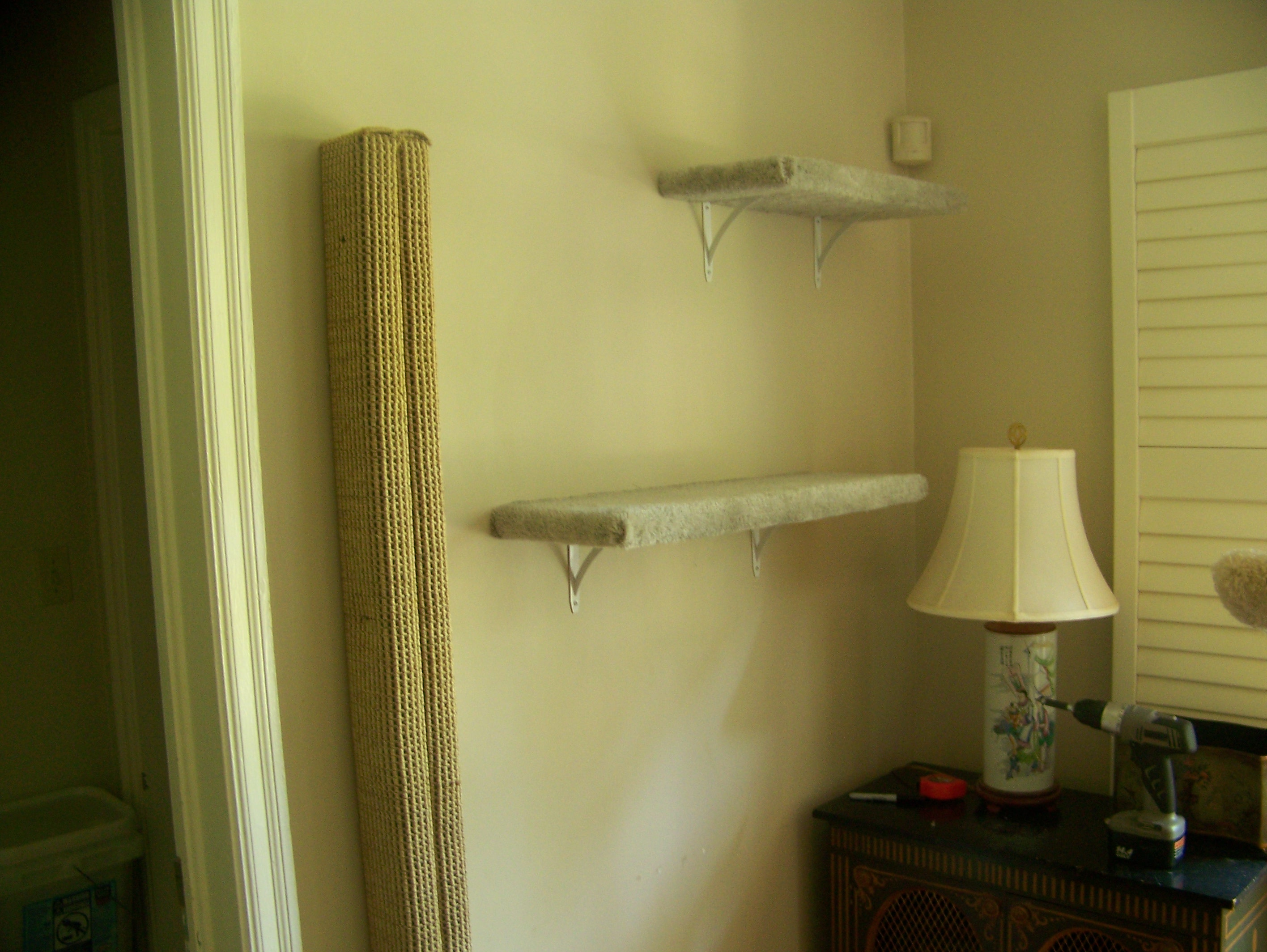 Another six foot tall scratching post and shelves leading to a long run above the window.