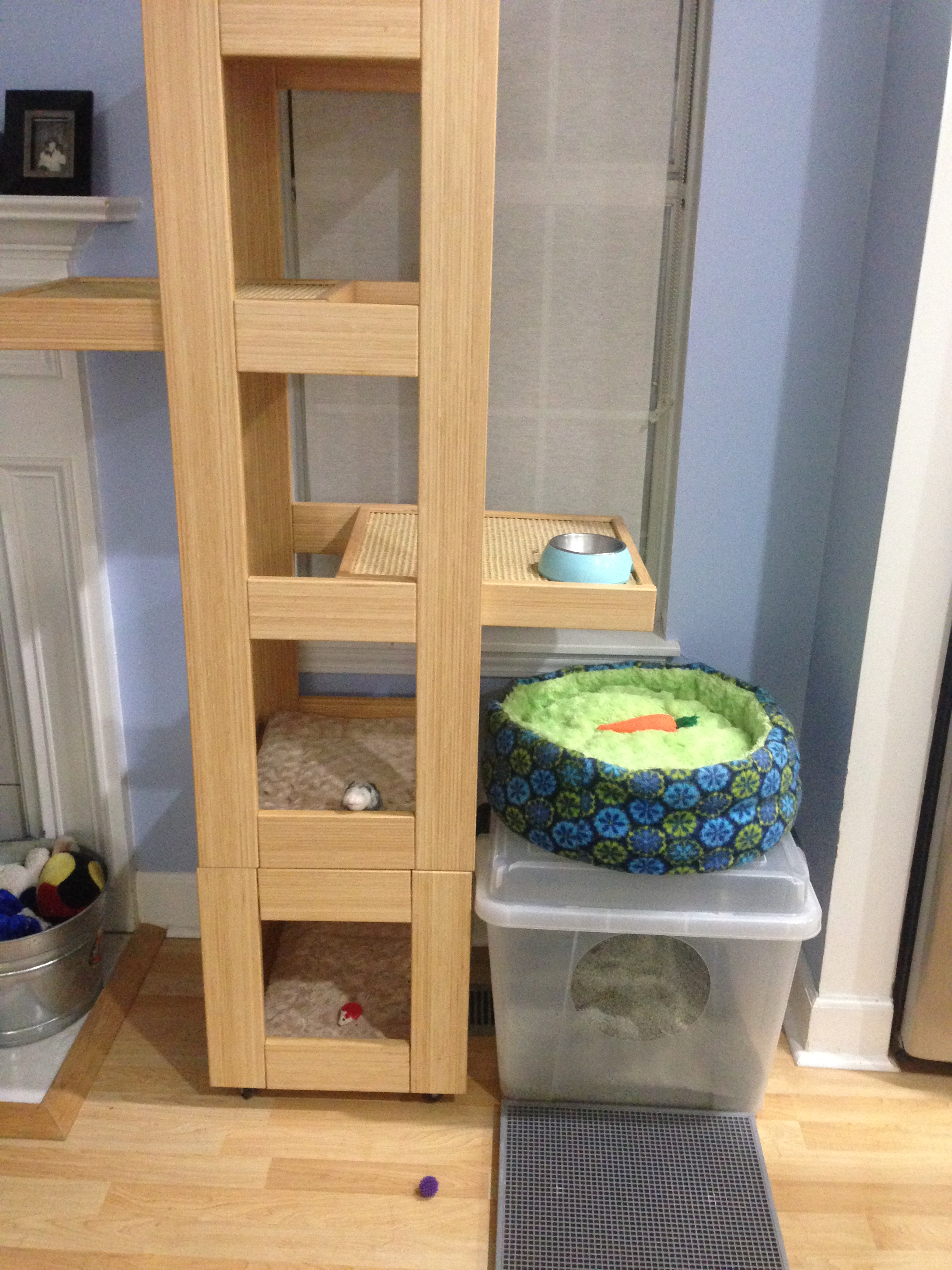 Food, litter and vertical space in 2 square feet!