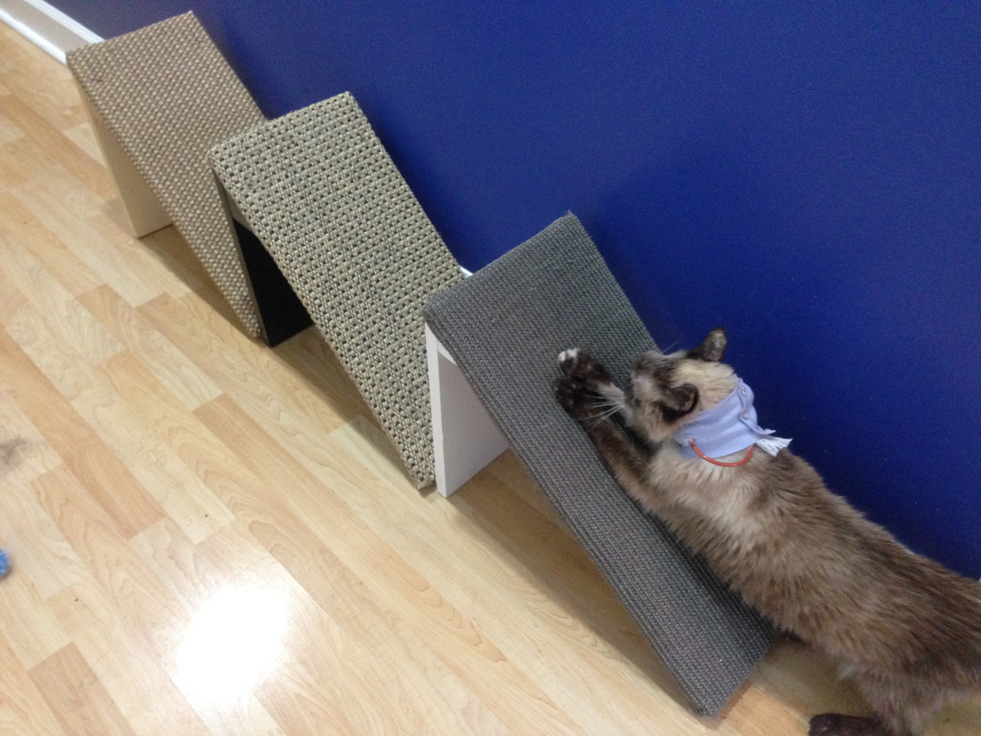 Demonstrating scratch pad use.