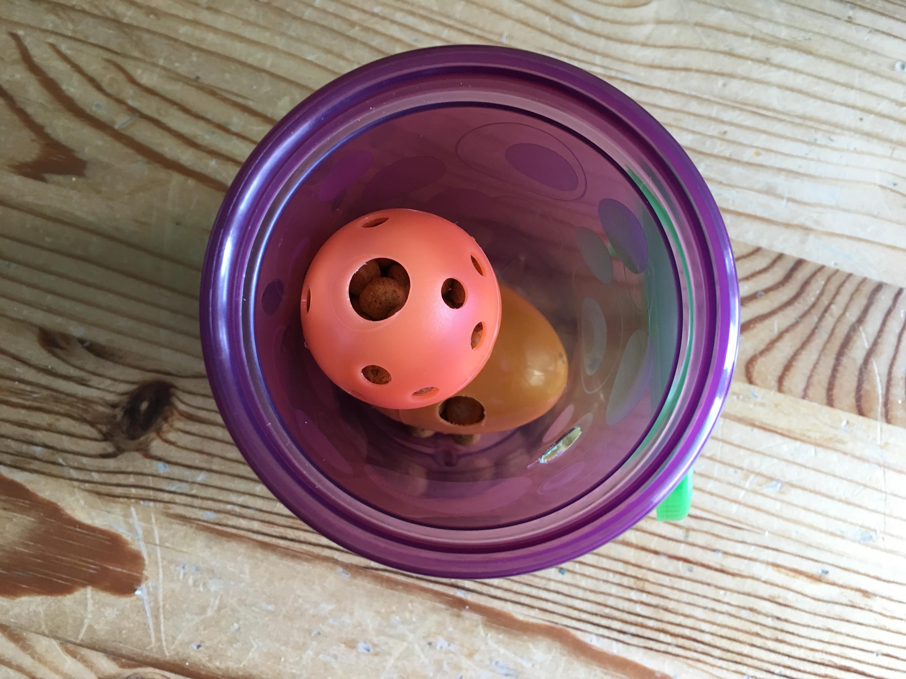 2. Drop inside foraging cup by Fundamentally Feline.