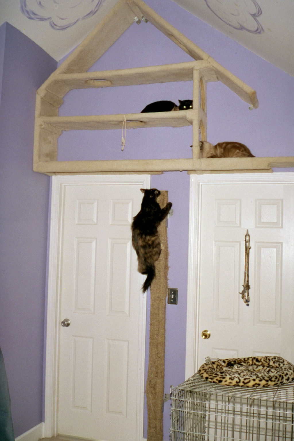 The first version of our kitty treehouse.