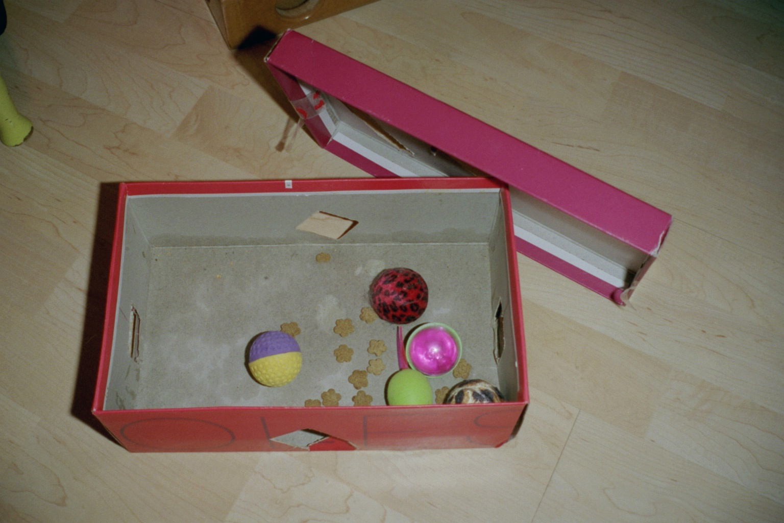 An old shoe box makes a great food puzzle!