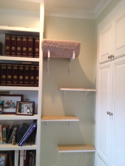 Sisaled steps going to top shelf of book case, so cats to run through to the sisal run above the window!